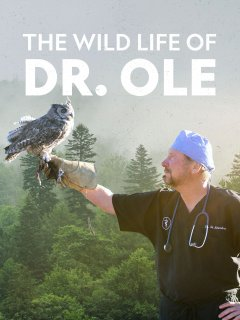 The Wild Life of Dr. Ole - Season 1